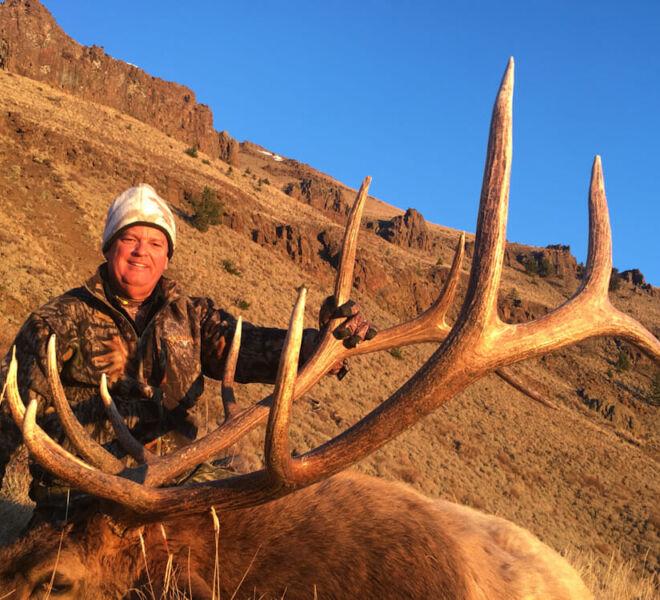 Bull Elk Hunts In Wyoming