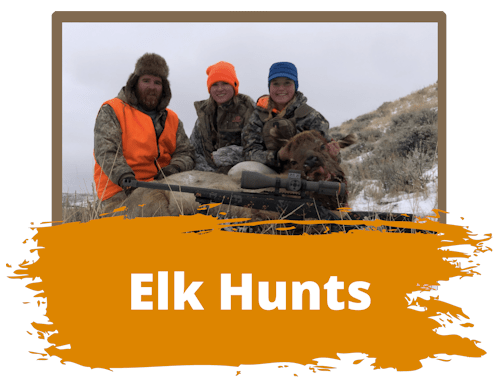 Wyoming Hunting Elk