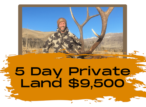 5 Day Public Land Bull Elk Hunt