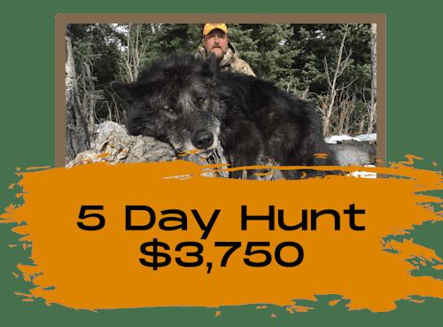 5 Day Wolf Hunts Wyoming
