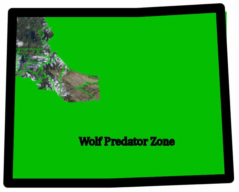 Wolf Predator Zone Wyoming